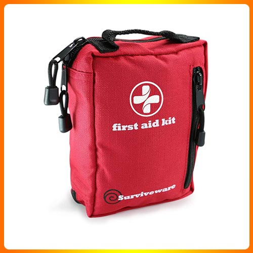 Small First Aid Kit with Labelled Compartments for Hiking